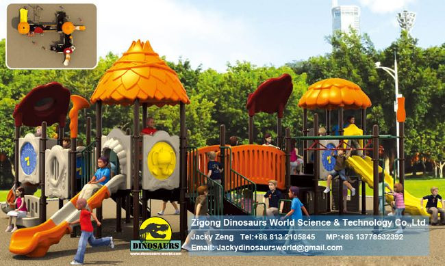 Theme park Playground equipments DWP007B