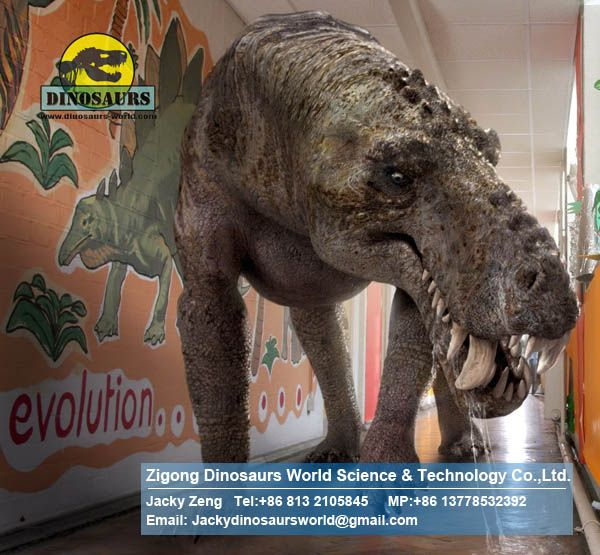 School educational equipments Animatronic Dinosaurs (Thrinaxodon) DWD031