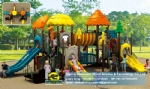 Children playground equipments DWP006B